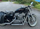 Harley devidson Sportster 883 XL