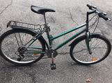 Mountain bike Esperia Verde - 21 velocità