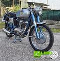 Ducati 100 Sport 1959