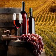 Risto wine bar con plateatico e caminetto