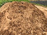 Terreno vegetale