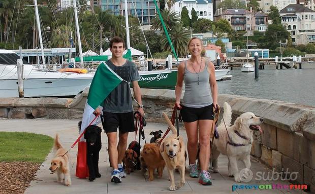 Dog walker & trainer