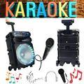 Cassa 2000W ideale per Karaoke
