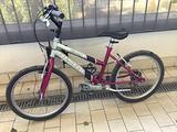 Mountain bike per bambina