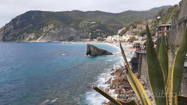 Monterosso 29 Agosto - 11 Settembre