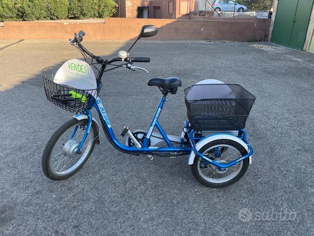 Triciclo / trike elettrico E-cargo Atala