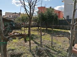 Giffoni V.P. centro Terreno con deposito