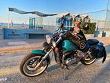 Borsa moto trasportino per cani bagster