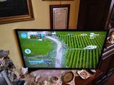 TV samsung 39 pollici