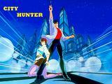 Serie completa City Hunter in DVD