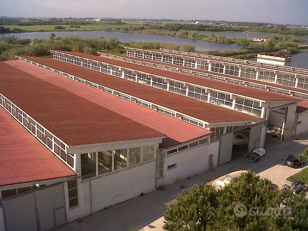 Capannoni industriali, Domiziana fronte Baia Verde