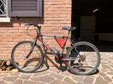 Mountain bike CicloCompany Swing