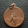 Medaglia in bronzo 7° Reggimento ALPINI