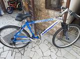 Bici n.26 marciante mountain bike alluminio