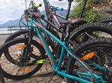 Mtb 24' junior Nuova Kellys bike
