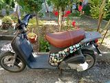Scooter Piaggio Free 50 usato