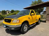 Ford F150 4700cc V8