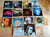 Lotto da Collezione Lp Vasco Rossi : 12 album