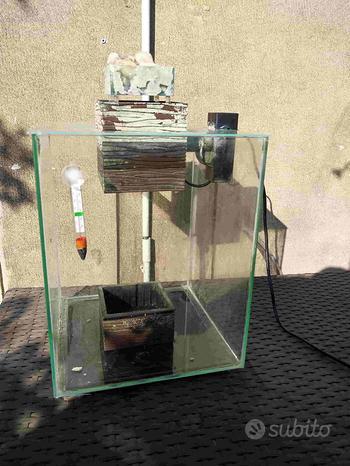 Acquario Fluval Chi 19 L con accessori