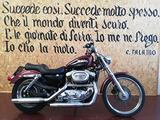 Harley-Davidson Sportster 1200 CUSTOM - 2001
