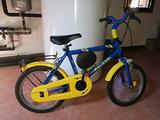 Bici Molinari per bambini