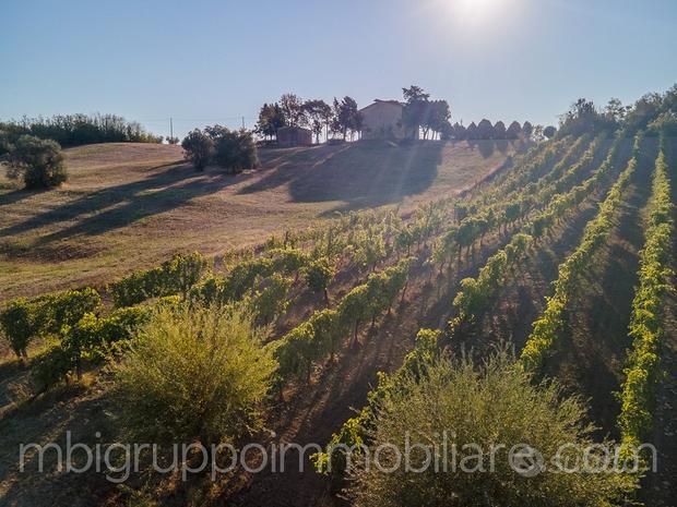 Fabbricato rurale da ristrutturare sulle colline r