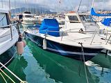 Barca Kelt white shark 225