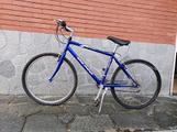 Bicicletta Olmo Oasi