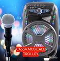 KARAOKE CASSA AMPLIFICATA Microfono Bluetooth Usb